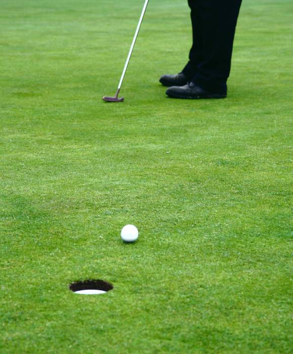 Putters are golf clubs with a specific goal: to get the ball into the hole.