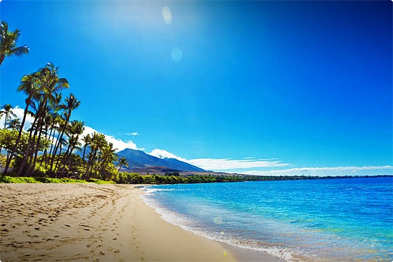 Things to do in Maui. If you're a golf enthusiast, you'll love Maui. Maui is home to a number of the best courses in Hawaii