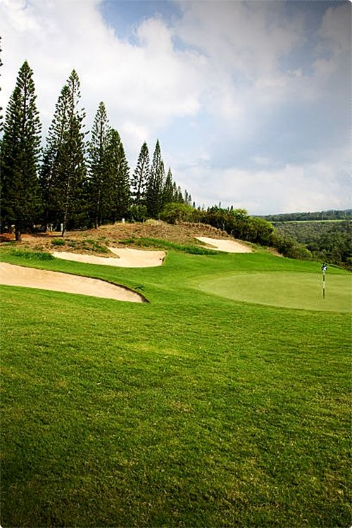 Golf In Maui Reviews. The battle-tested veteran of the Kapalua courses, the Bay Course has hosted more professional tournaments than any of the non-Oahu courses.